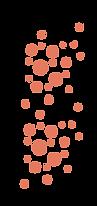 dot-2 copy_orange.png