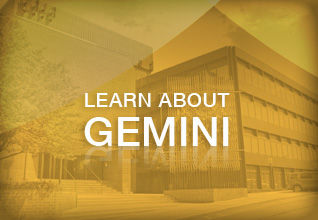 Gemini Investors Portfolio