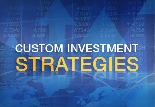 Gemini Investment Strategy