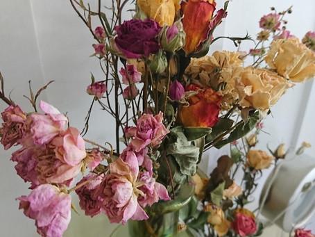 Dried flowers(ドライフラワー)