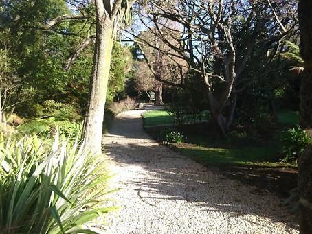 散策、冬のMillbrook Reserveの景色