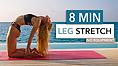 Pamela Reif Workout 8 min leg stretch