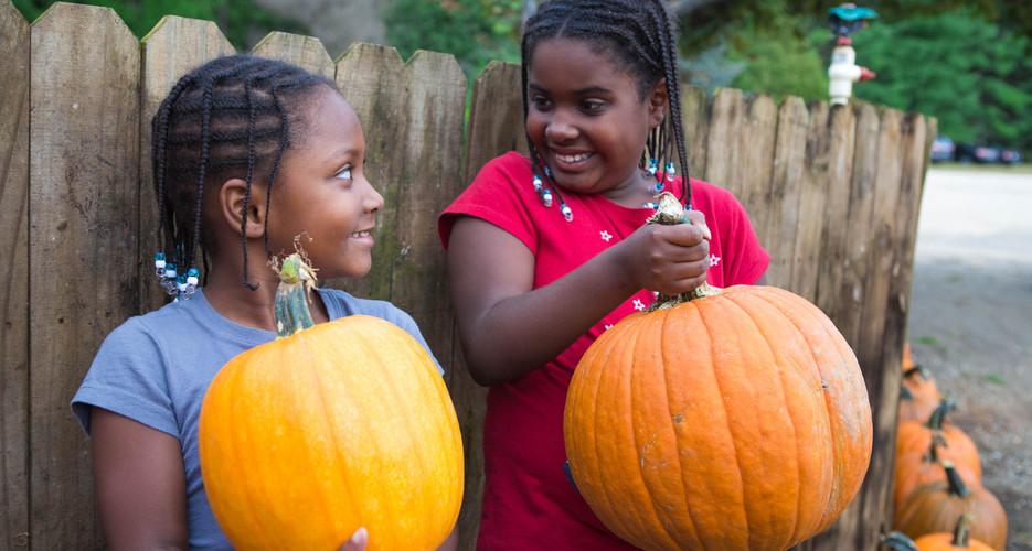 Pumpkin-117.jpg