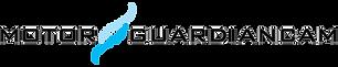 black-cropped-MGC-Header-Logo.png