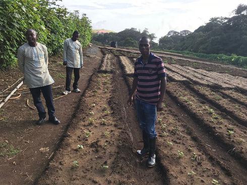Obudu Plateau Fruits And Vegetables Farmers Cooperative