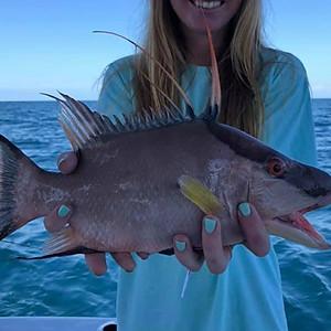 4 - 6 hour trips trolling / bottom fishing