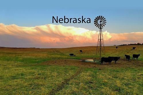 Nebraska Business Resources