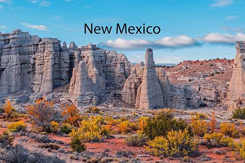 New Mexico Social Media Resources