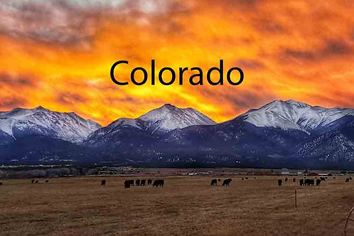 Colorado Business Resources