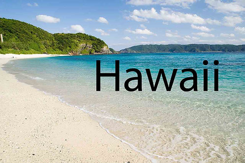 Hawaii Business Resources