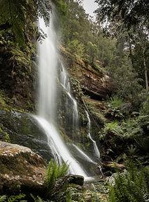 Marriott Falls, Maydena, Tasmania.jpg