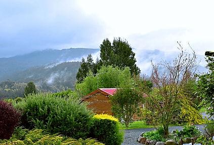 Cabin in Fog Main pic.jpg