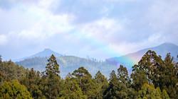 Rainbow from @ braveheartyao