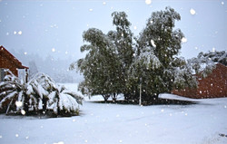 Cabins in August 2020 Snowfall
