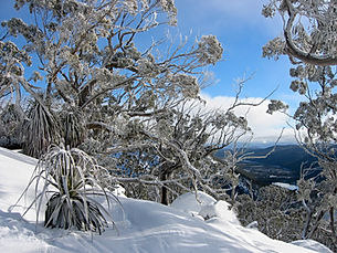 Mt Mawson Snow.jpg