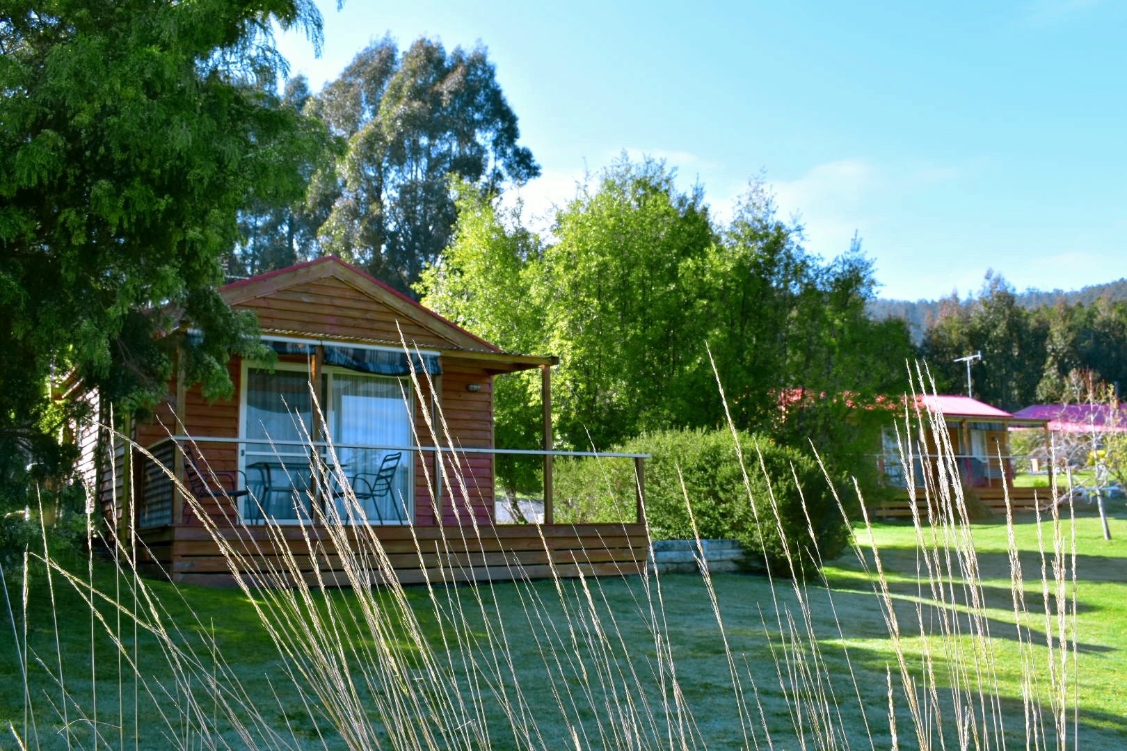 Rose & Lavender Cabins