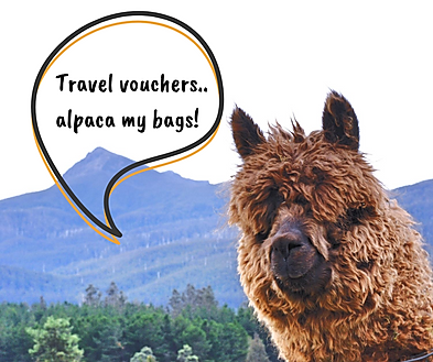 Travel Voucher Bubble.png