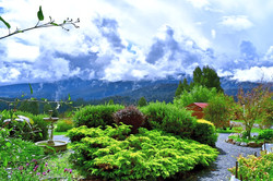 Lodge House & Apartment Gardens