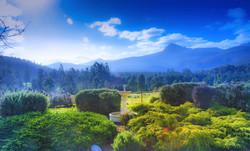 The Lodge garden & mountain view