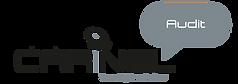 Logo CARINEL Audit-EN.png