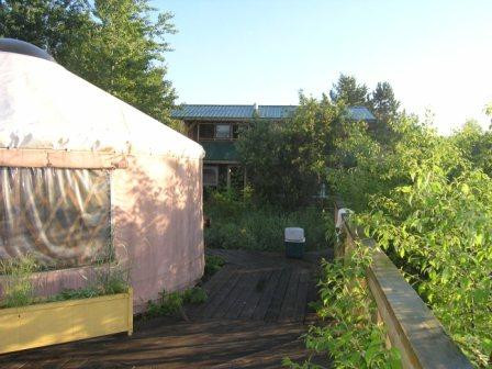 My yurt with house in the background
