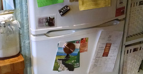 Article - The Most Efficient Refrigerators For Off-Grid Living