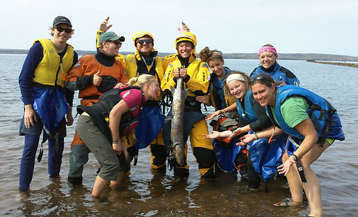 Sea Kayak Group Trips
