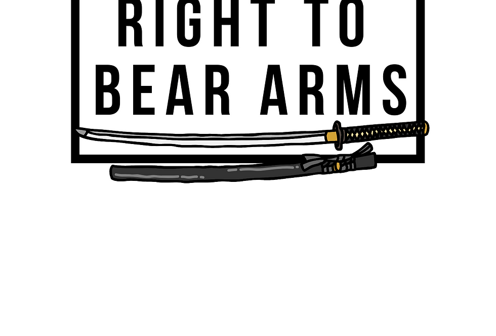 Minimal T-Shirt: RIGHT TO BEAR ARMS
