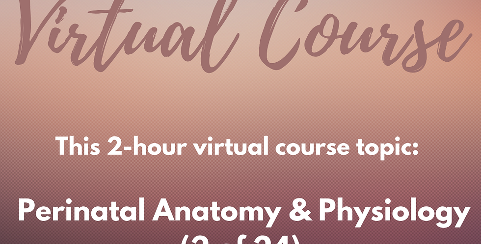 V-COURSE: 2 of 24 Perinatal Anatomy & Physiology