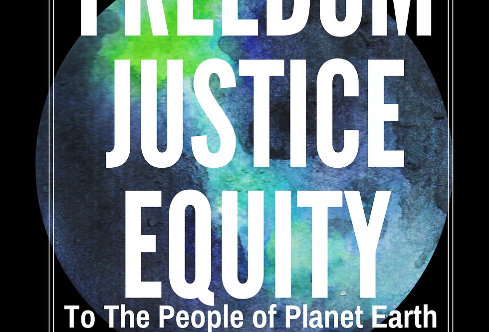 T-Shirt: Freedom Justice Equity
