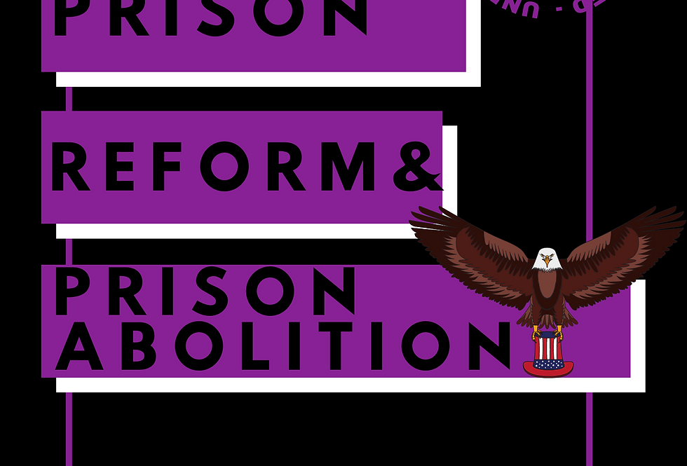 T-Shirt: Prison REFORM & ABOLITION