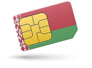 International_calls_Belarus.jpg