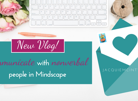 E4: Communicate with nonverbal people in Mindscape
