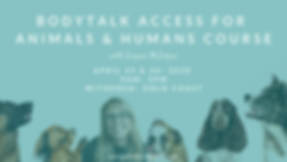 Access for animals and people-GOLD COAST