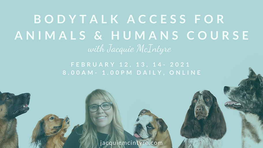 Access for animals and people-FEB 2021.J