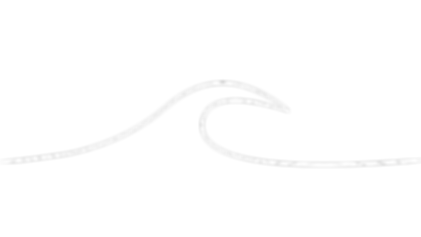 SunnyCoastOnline Wave Device.001.png