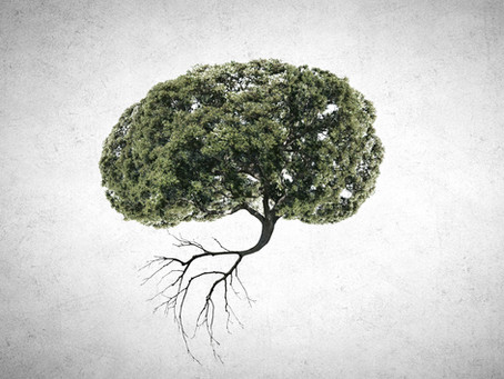 ALZHEIMER'S & HYPERINSULINEMIA: THE NATUROPATHIC DIETARY TOOL KIT