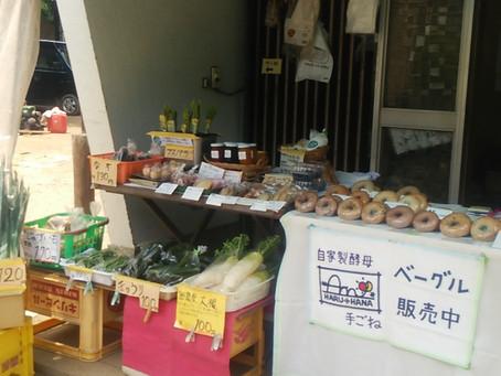 野菜販売や収穫体験とコラボイベント