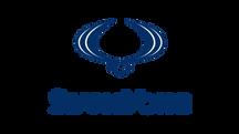 Logo-Ssang-Yong.png