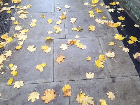 סודותיה של לונדון בסתיו - למתקדמים...