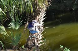 Stick Fishing