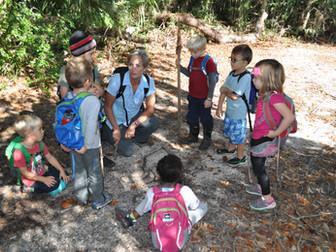 Why Forest Kindergarten?