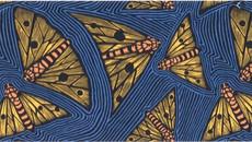 Omeo Region Human History: Aboriginal & European