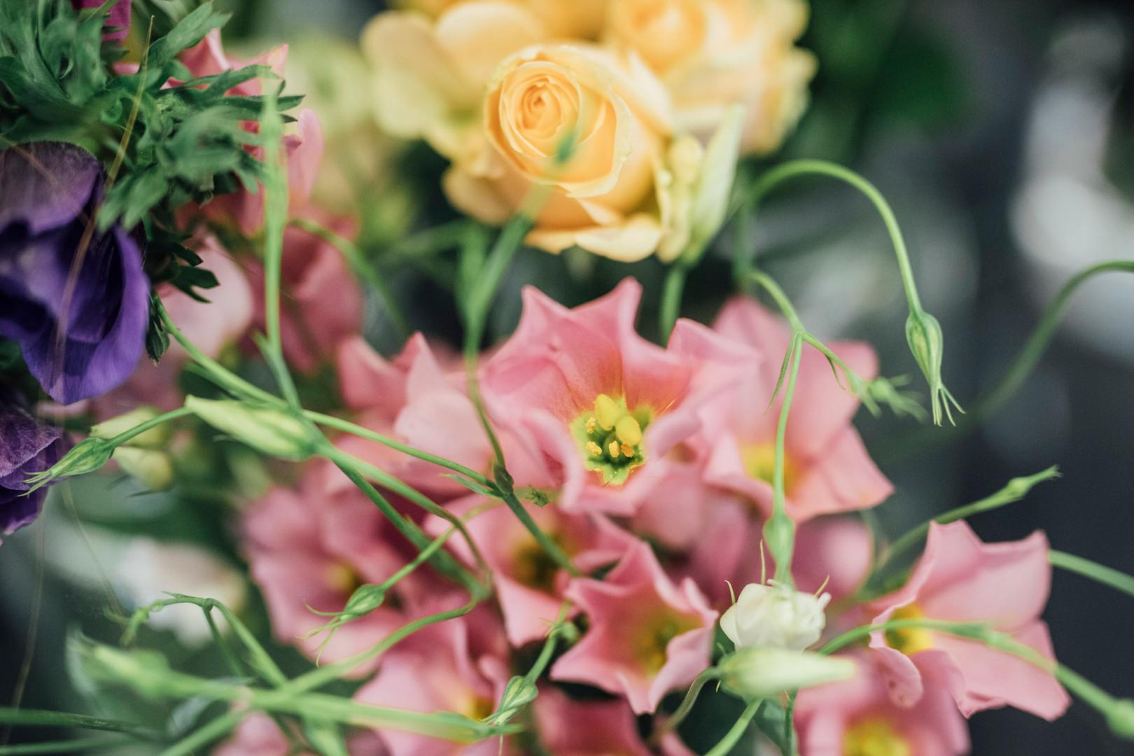 Blumen4_fs19-52.jpg