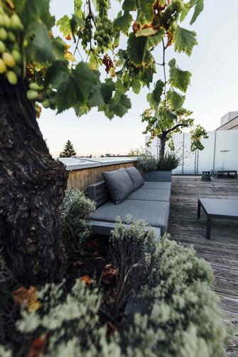 Sonnenaufgang-hotelsonne_fs20-6.jpg