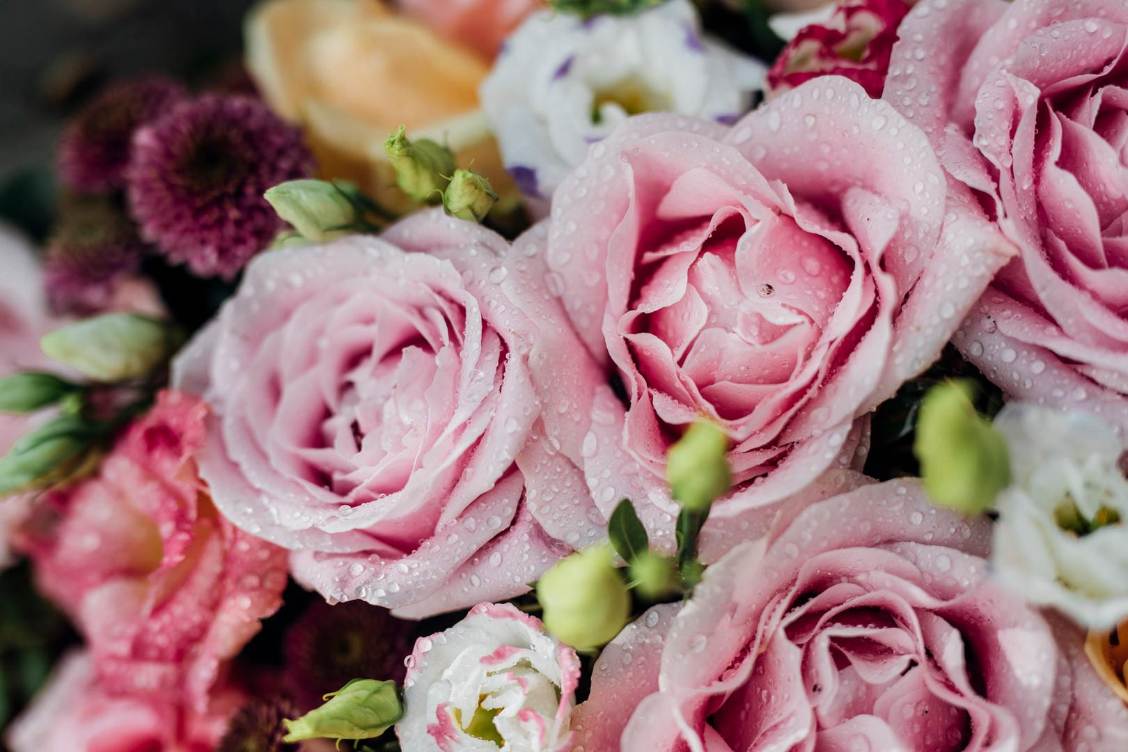 Blumen5-9.jpg