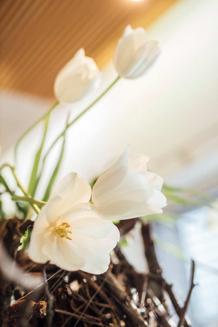 Blumen4_fs19-4.jpg