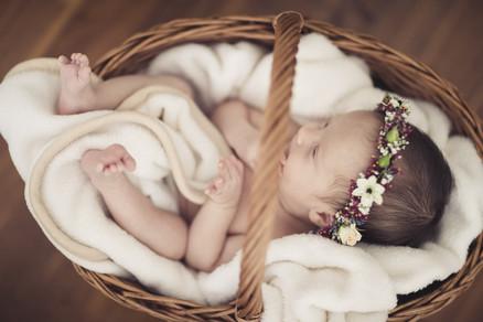 babyfotos (2).jpg