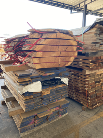 See how a local tree becomes usable lumber!