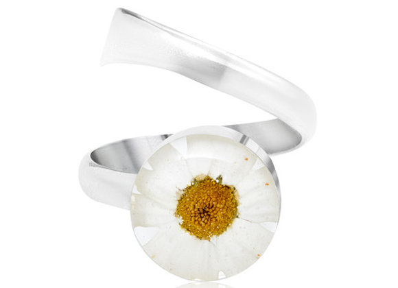 Daisy Real Flower Silver Ring